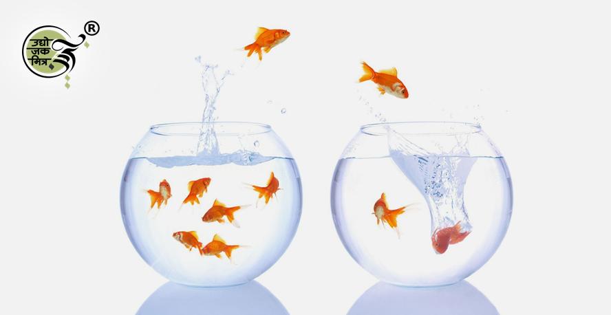 एका व्यवसायाचा खर्च भागवण्यासाठी दुसरा व्यवसाय सुरु करत नसतात.
